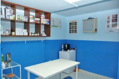 Ветеринарна клиника Лозенец 01 - Лозенец Лагера | Vetcare София